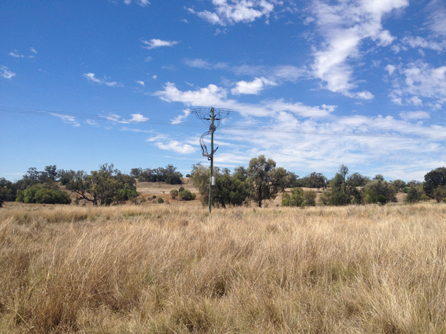 Bushfire Mitigation NOJA Power OSM Recloser in outback NSW, Australia