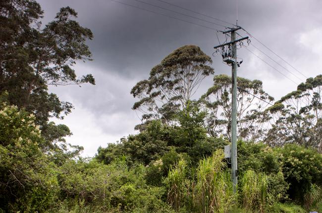 Bushfire Mitigation NOJA Power OSM Recloser in Queensland, Australia.